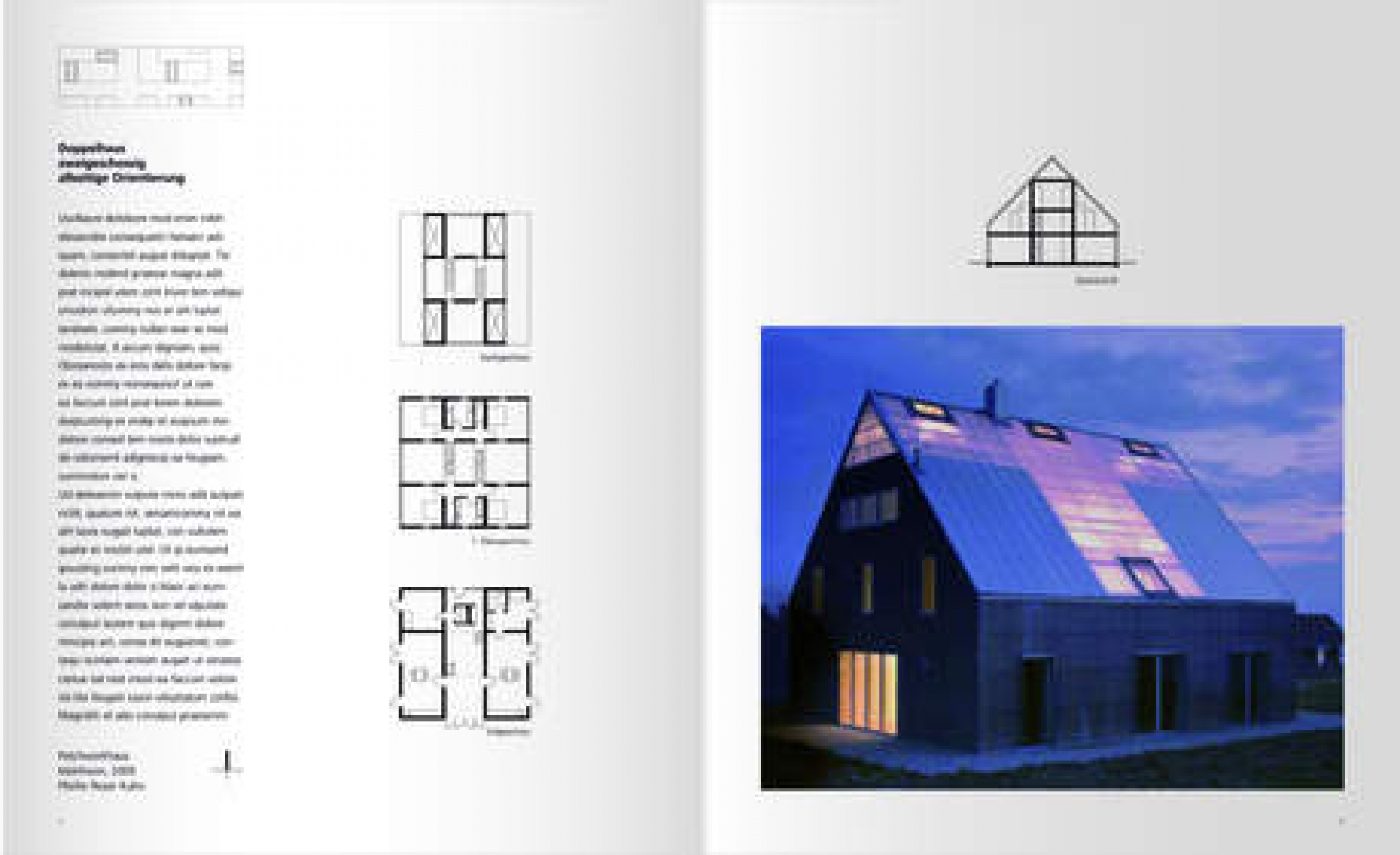 Freestanding Houses: A Housing Typology