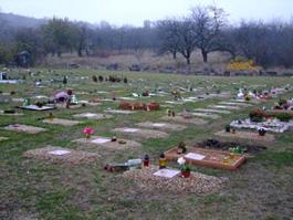 Zvířecí hřbitov brno